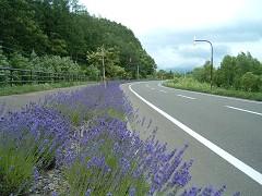 道道上富良野吹上線