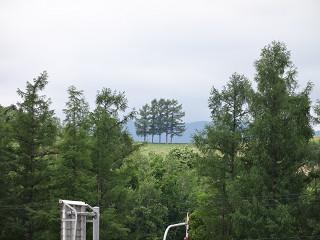 かんのファームより見える五本の木(2013年6月21日)