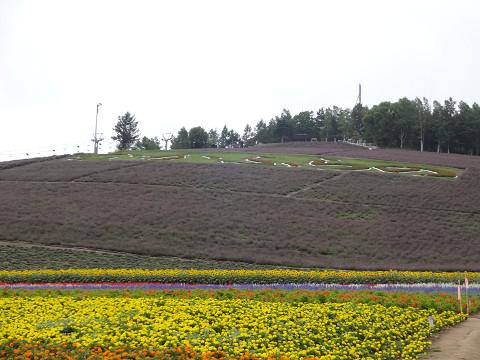 中富良野町営(2016年8月5日)